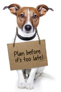 plan dog