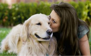what pets do to make our lives better